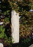 pierre qui permet de capter les rayonnements ionisants des activités Telluriques et sert de diffuseur pour libérer ce trop plein d'énergie. C'est un moyen naturel, peu onéreux et très efficace, qui nous permet de rééquilibrer un lieu.